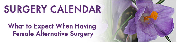 Female Alternative Surgery Calendar